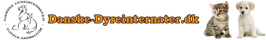 Danske-Dyreinternater.dk er en af Danmarks største sider om kæledyr